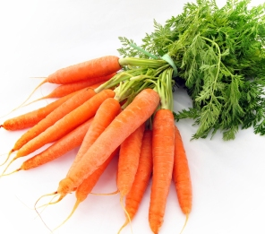 carrots-main-photo